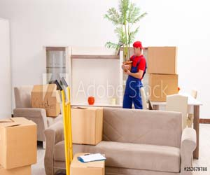 Home Shifting Services from Delhi to Sonipat Secure and Completely Safe Low Range of Rates.